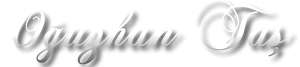 Oğuzhan TAŞ Web Tasarım & Programlama Blogu